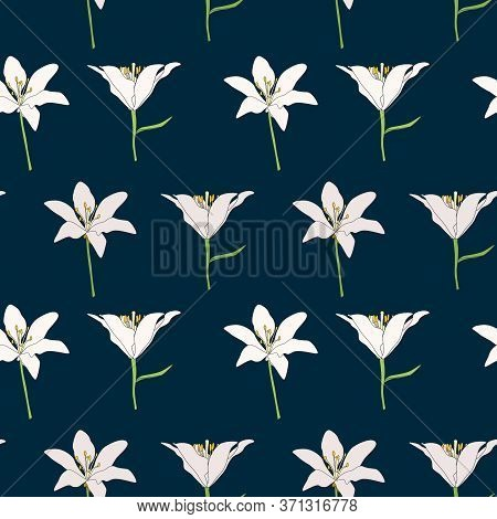 Hand Drawn Lilly Flower Seamless Pattern Background. Vector Illustration
