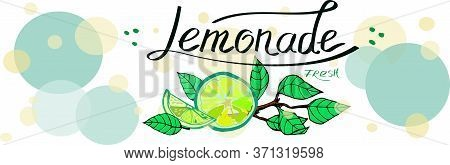 Lemonade Lemon Branch Label Poster Advertising Cover Healthy Food Summer Thirst Hand Drawn Vector Is