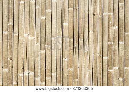 White Bamboo Fence Background, Bamboo Plank Fence Texture