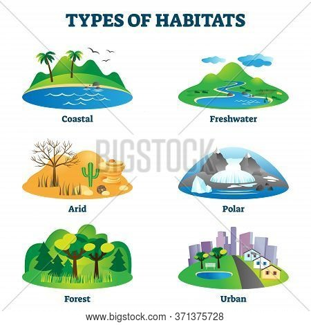 Types Of Habitats Vector Illustration. Labeled Various Species Home Examples Set. Educational Collec