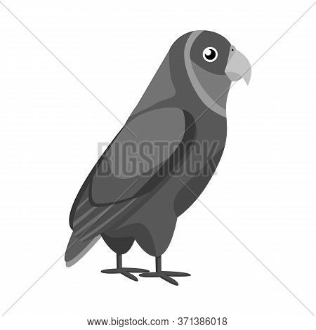 Vector Design Of Parrot And Green Logo. Set Of Parrot And Brazilian Stock Vector Illustration.