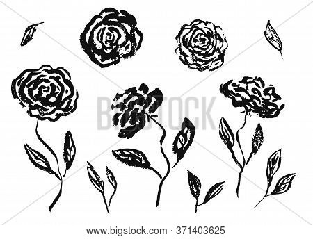 Set Of Hand Drawn Chinese Black Ink Rose Or Peony Flowers And Leaves. Sketch Vector Inky Floral Blos