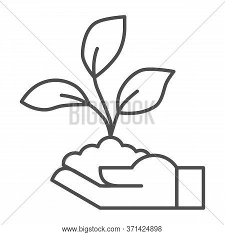 Sprout In Hand Thin Line Icon, Ecology Concept, Hand Holding Seedling With Three Leaves Sign On Whit