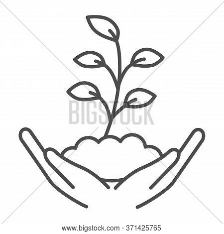 Hand Holds Small Plant With Many Leaves Thin Line Icon, Ecology Concept, Sprout Growing In Ground Si