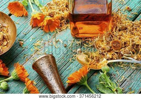 Marigold In Herbal Medicine