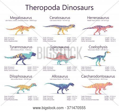 Theropoda Dinosaurs. Colorful Vector Illustration Of Dinosaurs Isolated On White Background. Set Of