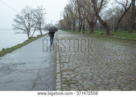 A Man Walks Under An Umbrella In The Rain. Man Goes Under An Umbrella In The Fog. Adult Man Walking