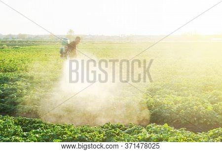 A Farmer Sprays A Cloud Of Pesticides Under The Sun's Rays On A Potato Plantation. Protecting Agains
