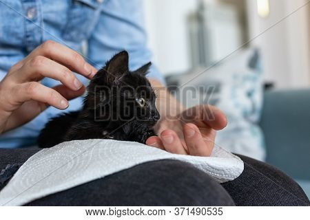 Woman Cuddling Black Cat. Woman Hugging Her Pet Cat. Close Up Of Little Black Cat. Small Cat Pet. Ca