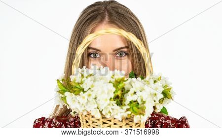 Arrange Cut Flowers Nice Bouquet. Happiness. First Spring Flowers. Beautiful Bloom. Womens And Mothe