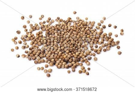 A Pile Of Coriander Seeds Isolated On A White Background. Coriander, Dhania Or Malli For Giving A Pl