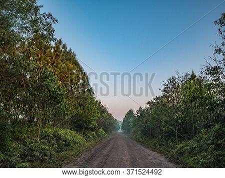 Nature Trail In The Morning On Phu Kradueng Mountain National Park In Loei City Thailand.phu Kraduen