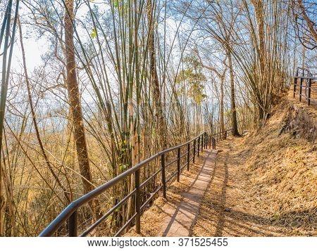 Nature Trail On Phu Kradueng Mountain National Park In Loei City Thailand.phu Kradueng Mountain Nati