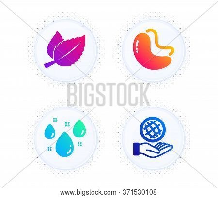 Mint Leaves, Cashew Nut And Rainy Weather Icons Simple Set. Button With Halftone Dots. Safe Planet S