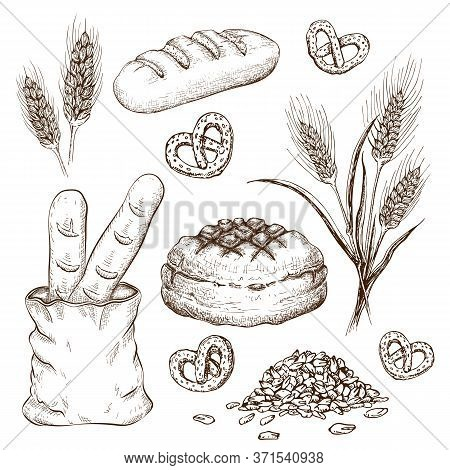 Hand Drawn Breads Set Isolated On White. Vector Vintage Illustration Of Variety Bread Like French Ba