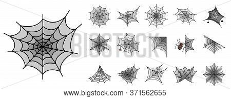 Spider Icon Set. Outline Set Of Spider Vector Icons Thin Line Color Flat Isolated On White