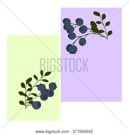 Seamless Pattern With Blue, Large Blueberries On Branches And Bushes With Green Leaves. Berry Patter
