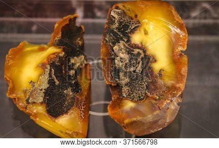 Fragments Of Amber Close-up. Natural Unpolished Amber.