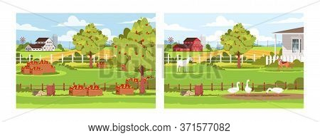 Daytime Farm Semi Flat Vector Illustration Set. Fresh Apple Harvest, Livestock And Poultry. Garden O