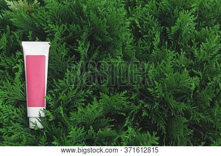 One Tube Of Cosmetic Product With A Pink Label Without Name Lies On The Green Foliage Of Natural Pla