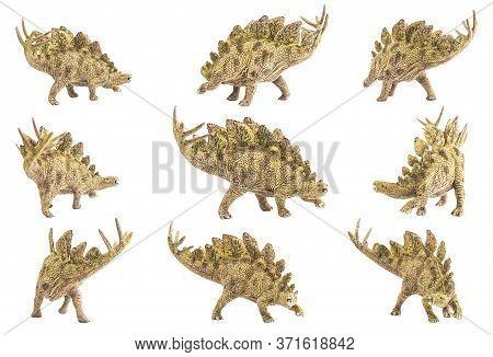 Stegosaurus , Dinosaur On White Background . Stegosaurus , Dinosaur On White Background