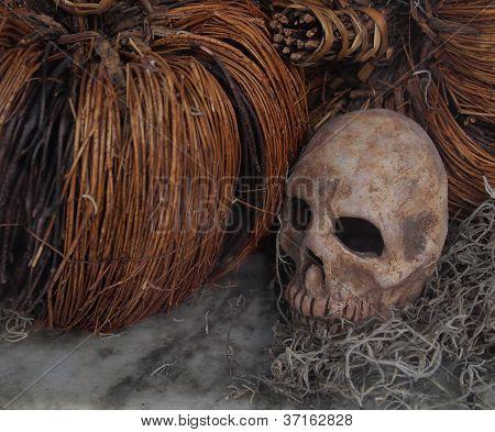 Halloween Skull Display