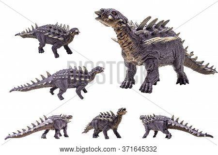 Polacanthus Dinosaur On White Background . Polacanthus Dinosaur On White Background .
