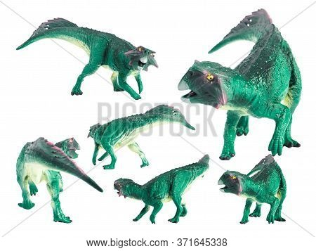 Psittacosaurus Dinosaur On White Background . Psittacosaurus Dinosaur On White Background .