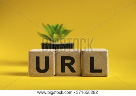 Url - Conceptual Text On Wooden Cubes On A Bright Background And A Black Pot With A Flower Behind