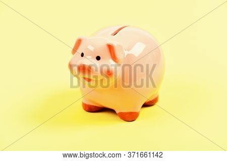 Finances And Investments Bank. Bank Deposit. Financial Education. Piggy Bank Adorable Pink Pig Close
