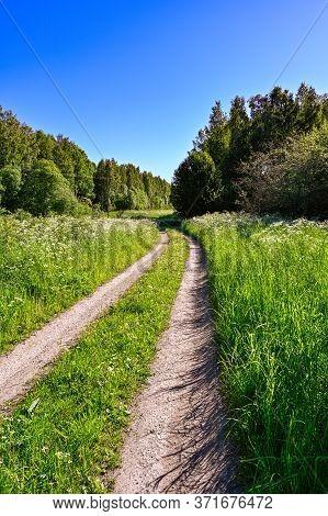 Gravel Road Through Fields A Sunny Summer Morning