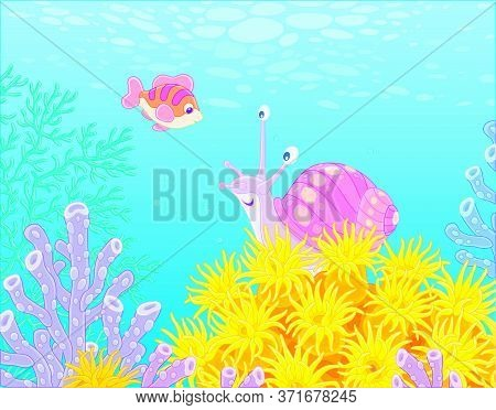 Funny Marine Snail And A Small Cheerful Fish Swimming Among Bright And Colorful Corals In Blue Water