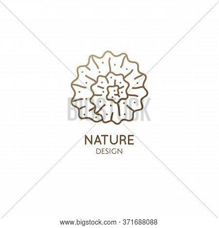 Spiral Seashell Minimal Logo. Round Icon In Linear Style. Vector Outline Illustration Sea Decorative