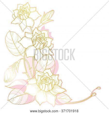 Vector Corner Bouquet With Outline Gardenia Flower, Bud And Ornate Leaf In Pastel Pink And Gold Isol
