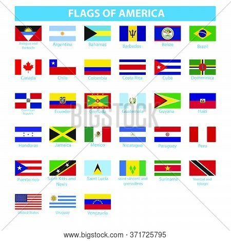 Flag Of Africa  Africa Flag Vector Nigeria Isolated,