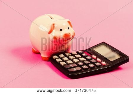 Piggy Bank Symbol Of Money Savings. Services For Accounting. Accounting Software. Finances And Inves