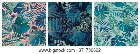 Set Of Seamless Patterns With Exotic Green Monstera Leaves And Palm Branches, Summer Tropical Backgr