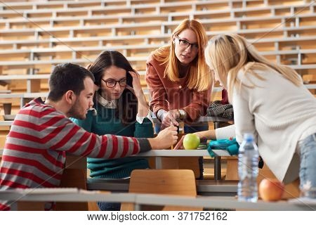 Young freshmen students branstorming and comparing notes in amphitheater
