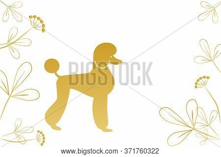 Golden Silhouette Of A Poodle On A White Background, Stylized Decorative Flowers, Copyspace. Blank F