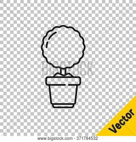 Black Line Plant In Pot Icon Isolated On Transparent Background. Plant Growing In A Pot. Potted Plan