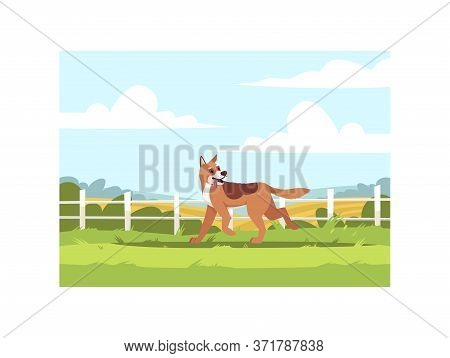 Shepherd Dog Run Outside Semi Flat Vector Illustration. Domestic Pet Outdoors Near Fence. Hound Pupp