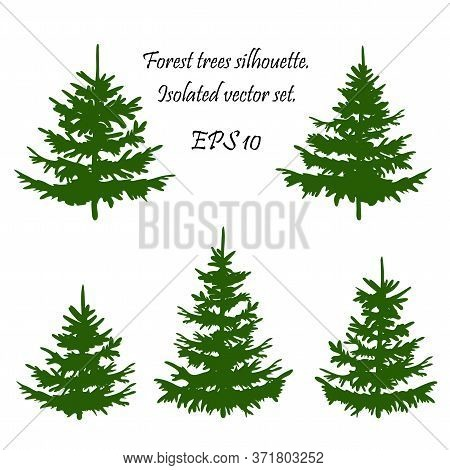 Silhouette Of Pine Trees. Set Of Forest Trees Isolated On White Background. Collection Coniferous Ev