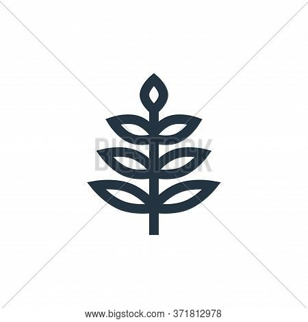 leaves icon isolated on white background from  collection. leaves icon trendy and modern leaves symb