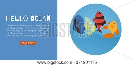 Tropical Fish Coral Reef For Travel Agency Web Template Cartoon Fishes Vector Illustration. Exotic S