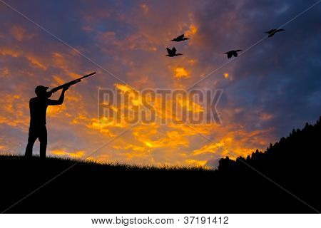 Bird Hunting Silhouette