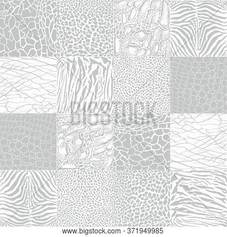 Vector Black And White Illustration Animal Pattern Background African Animal Wildlife