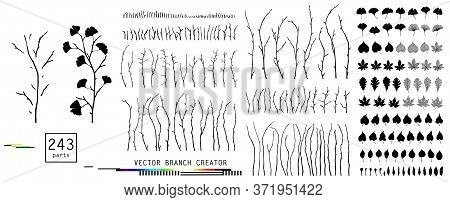 Leaves And Branches Set Isolated Objects Creator For Your Design. Big Elegant Collection Natural Flo