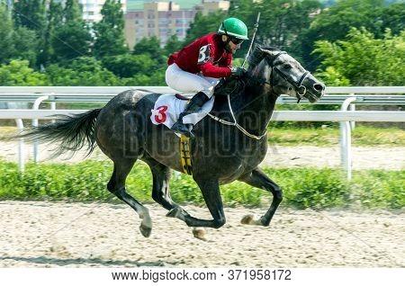Pyatigorsk,russia - June 14,2020:horse Race For Of The Prize In Honor Stallion Of Pesnyar Of Pyatigo