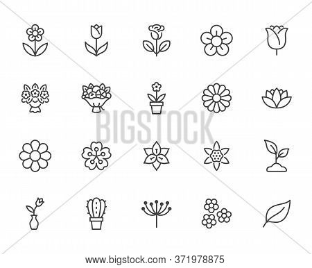 Flower Line Icon Set. Rose, Tulip In Vase, Fruit Bouquet, Spring Blossom, Cactus Minimal Vector Illu