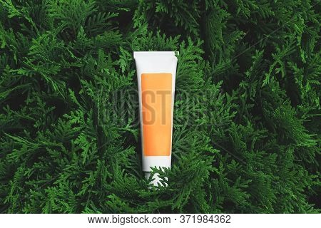 One Tube Of Cosmetic Product With A Orange Label Without Name Lies On The Green Foliage Of Natural P